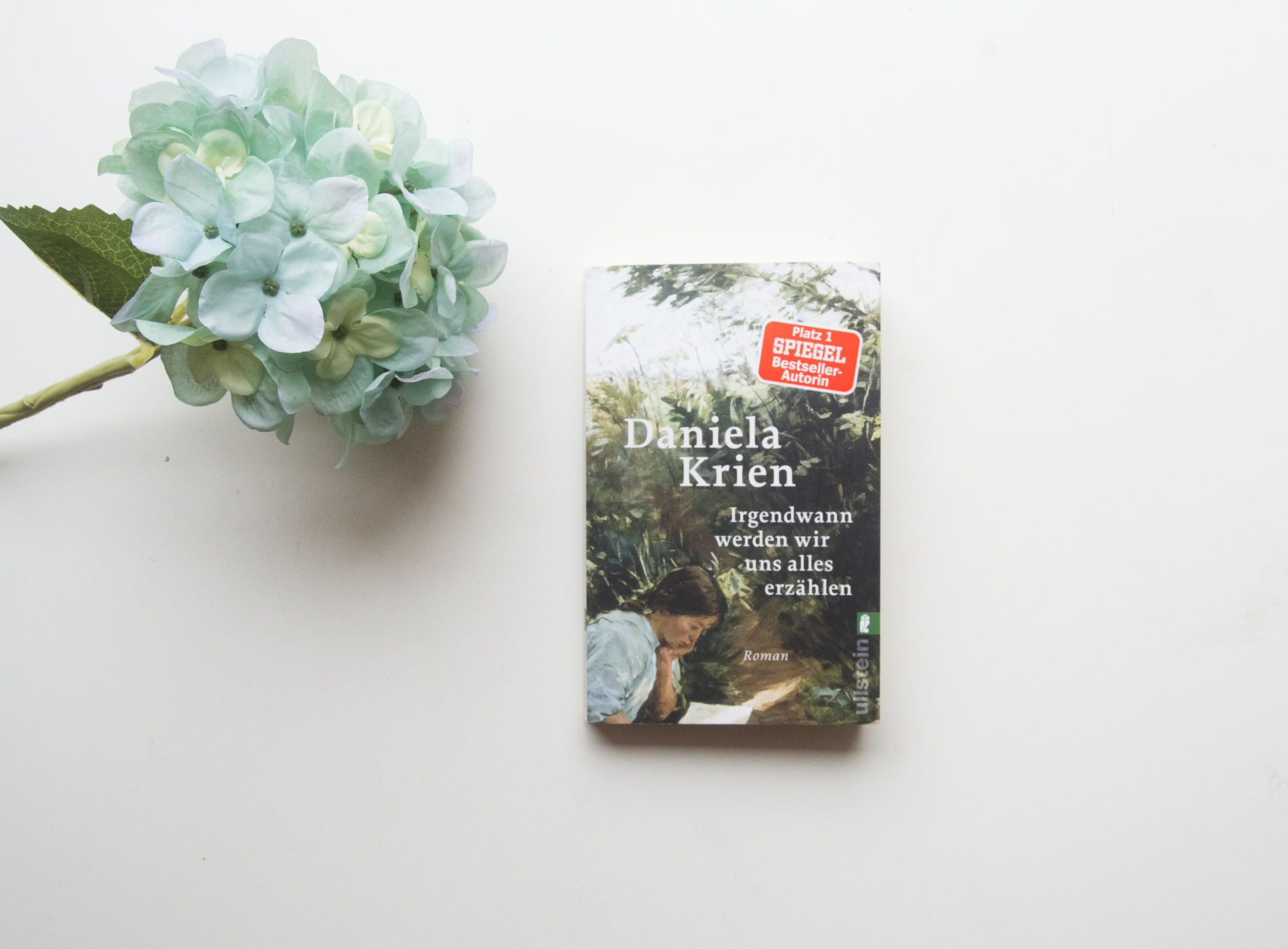 Literaturbesprechung:  »Irgendwann werden wir uns alles erzählen« von Daniela Krien
