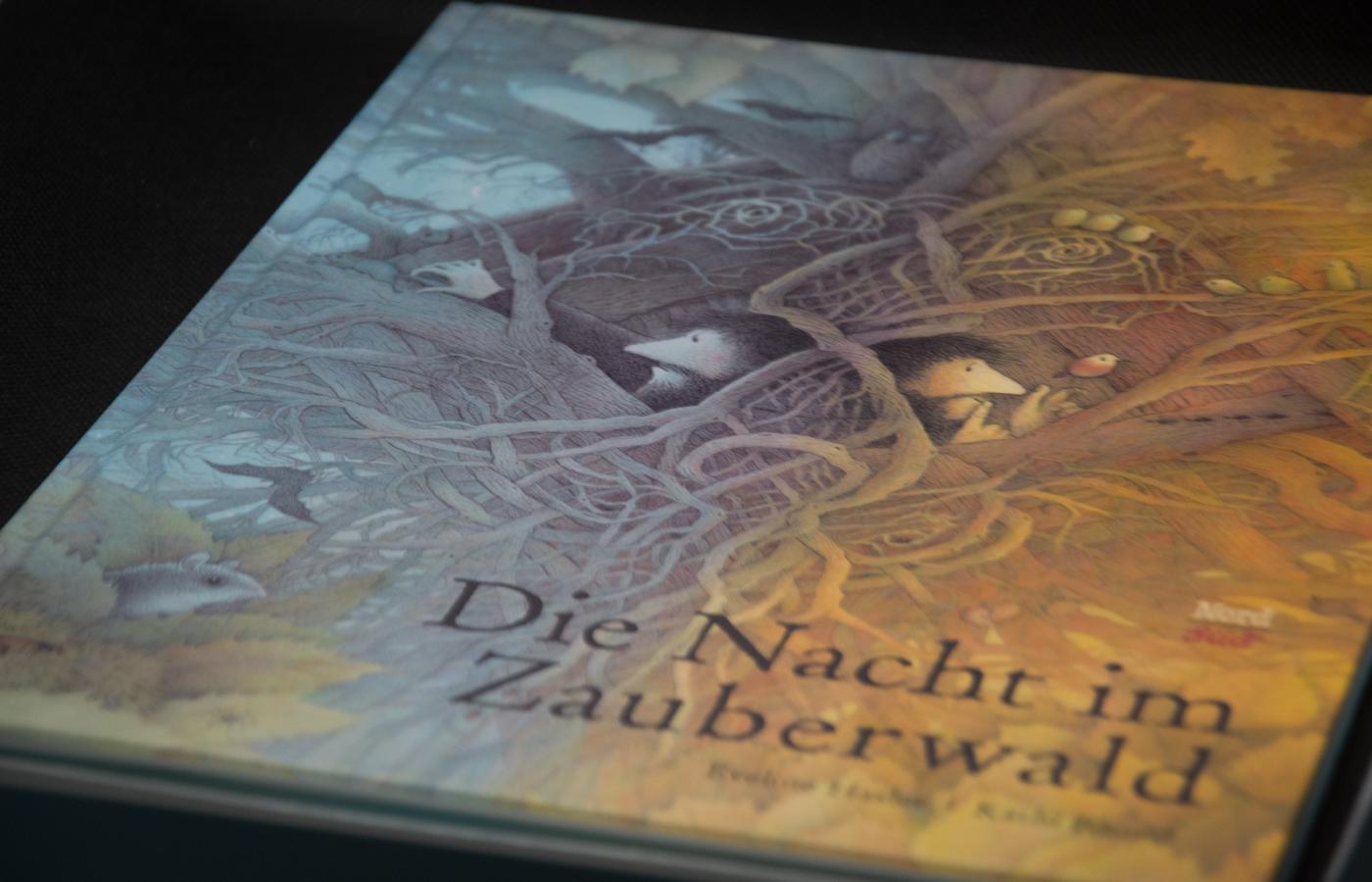 »Die Nacht im Zauberwald«  von Eveline Hasler & Käthi Bhend